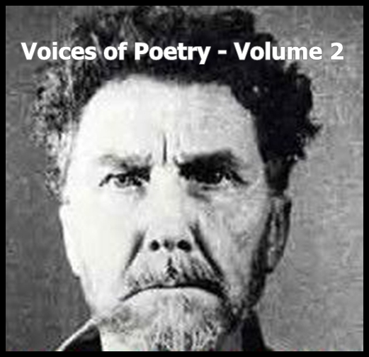 Voices of Poetry - Volume 2 [DD]