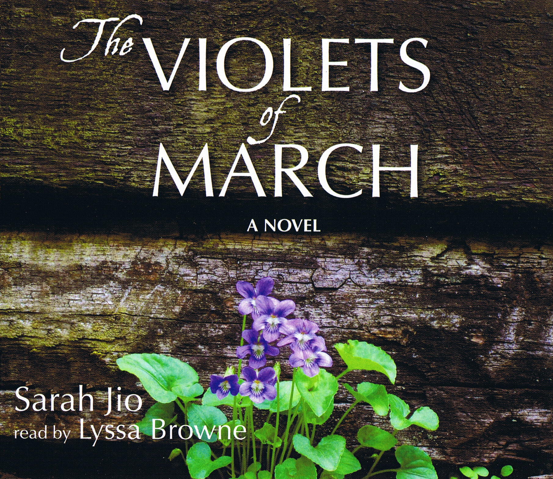 The Violets of March [8CD]