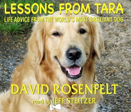 Lessons from Tara [5CD]