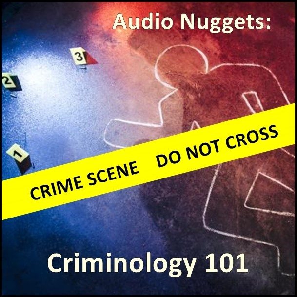 Audio Nuggets: Criminology 101 [DD]
