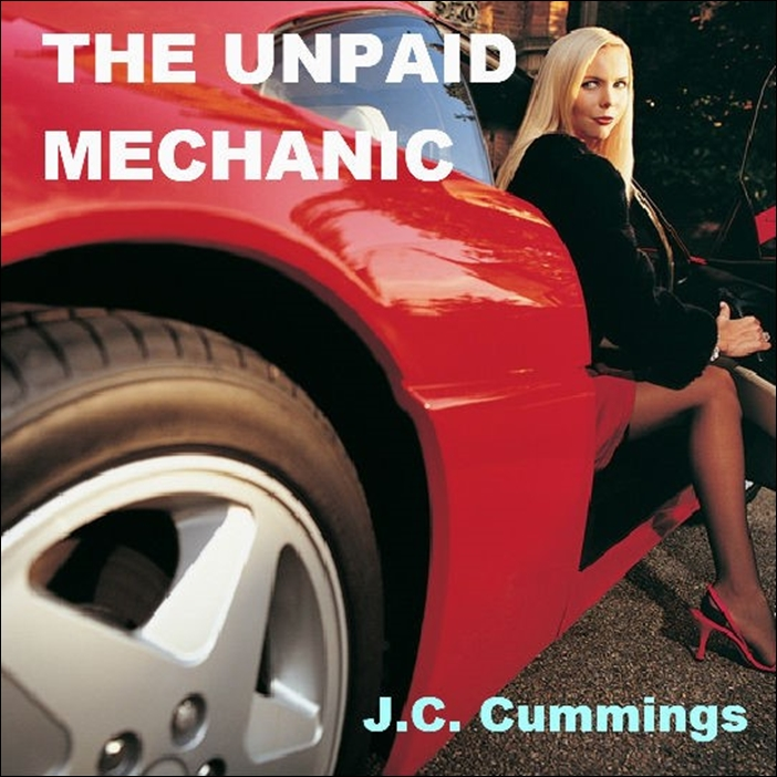 The Unpaid Mechanic [DD]
